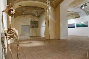 FraFragile Landscapes: Giovanni Longo 2/12gile Landscapes: Giovanni Longo